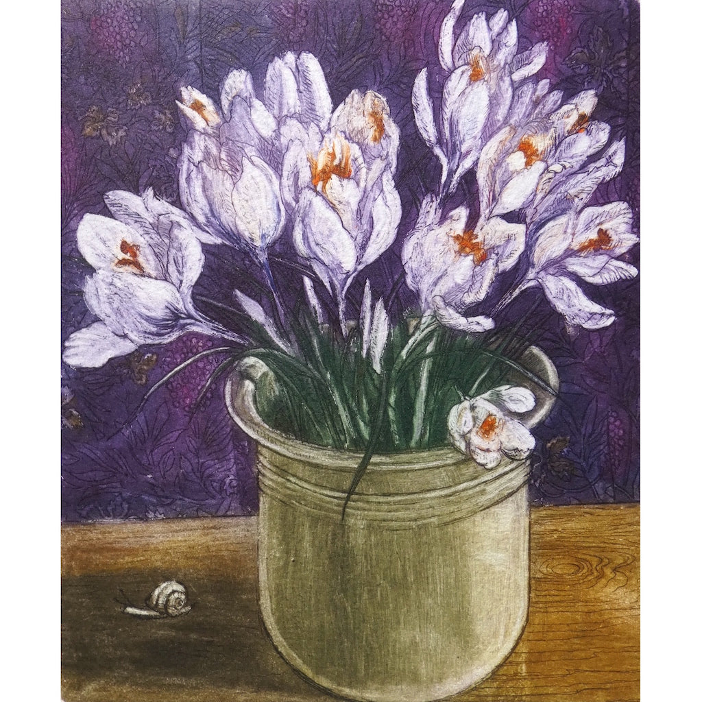 Limited edition etching of white crocuses by artist Valerie Christmas