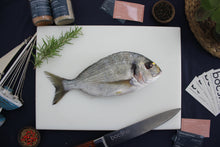 Load image into Gallery viewer, Wild Gilt-Head Bream | دنيس حر