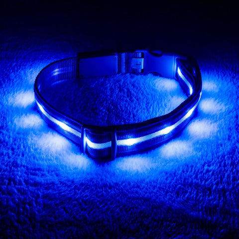 PET-SAFE LED COLLAR