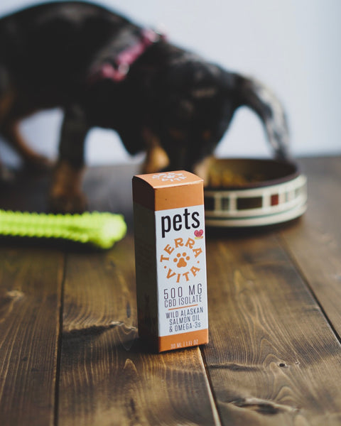 Benefits Of CBD + Omega-3s Fish Oil For Pet Health