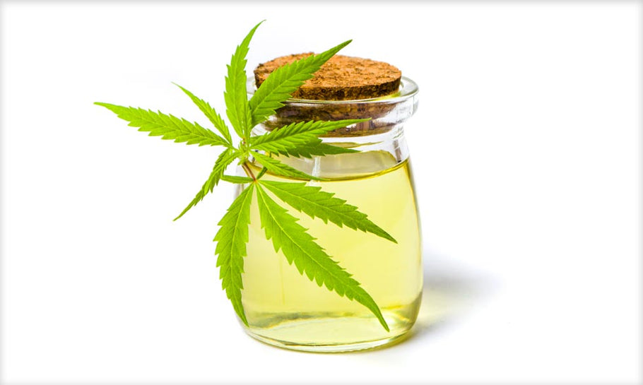 4 Factors to Consider When Buying CBD Oil