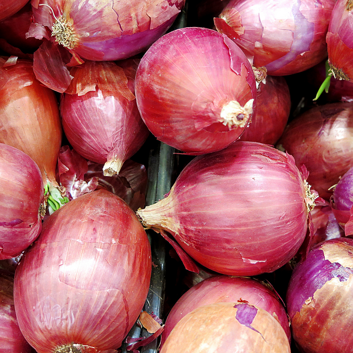 Red Onion (each)