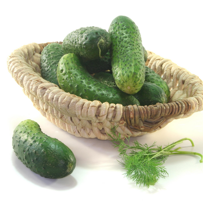 Pickling Cucumber-1L basket