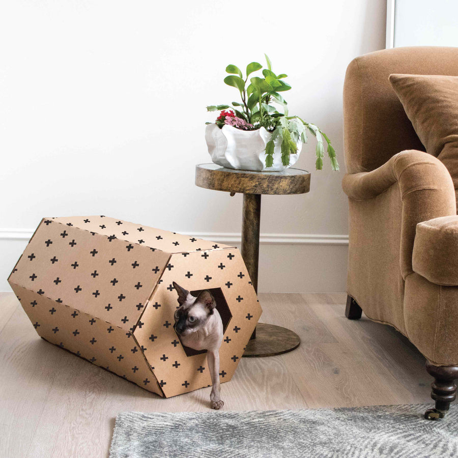 boxie cardboard homes for pets -lifestyle