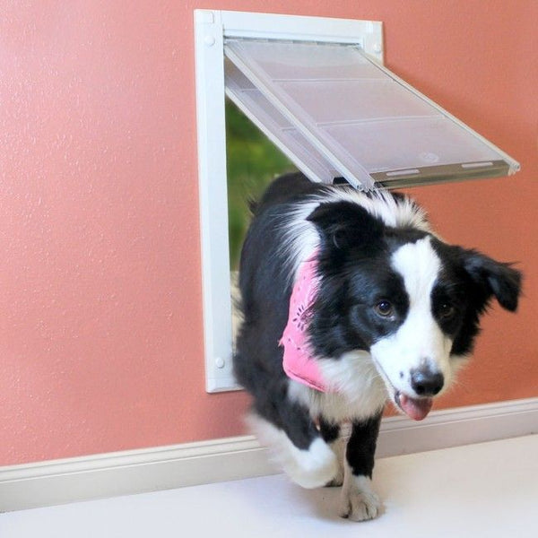 Install a Doggy Door in the Wall