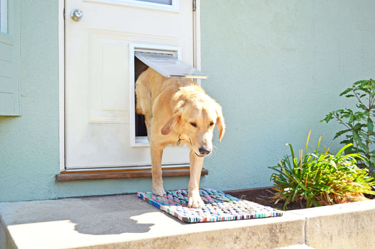 Size Large flap - this size is great for dogs the size of a Labrador Retriever.