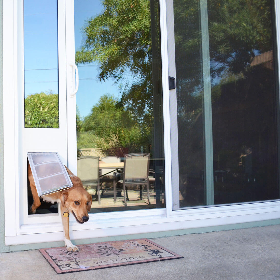 dog using the Thermo Panel 3e patio door insert