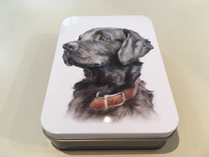 Labrador Tin Medium