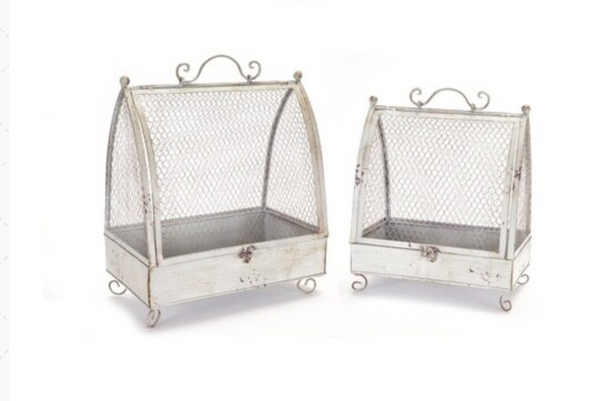 Chicken Wire Cages (set of 2)