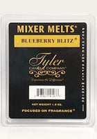 Mixer Melts BLUEBERRY BLITZ