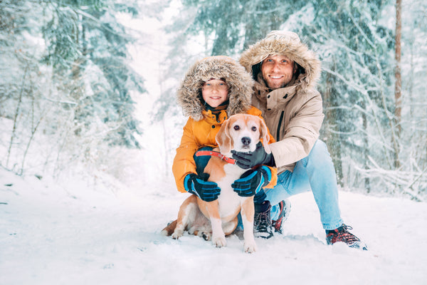 Two people walking with their dog in the winter snow wearing Smellydogz gear.