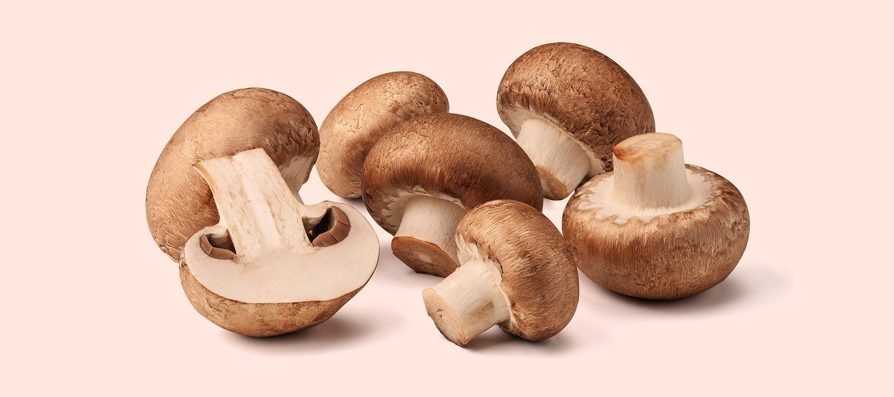 image of mushrooms on a light pink background.