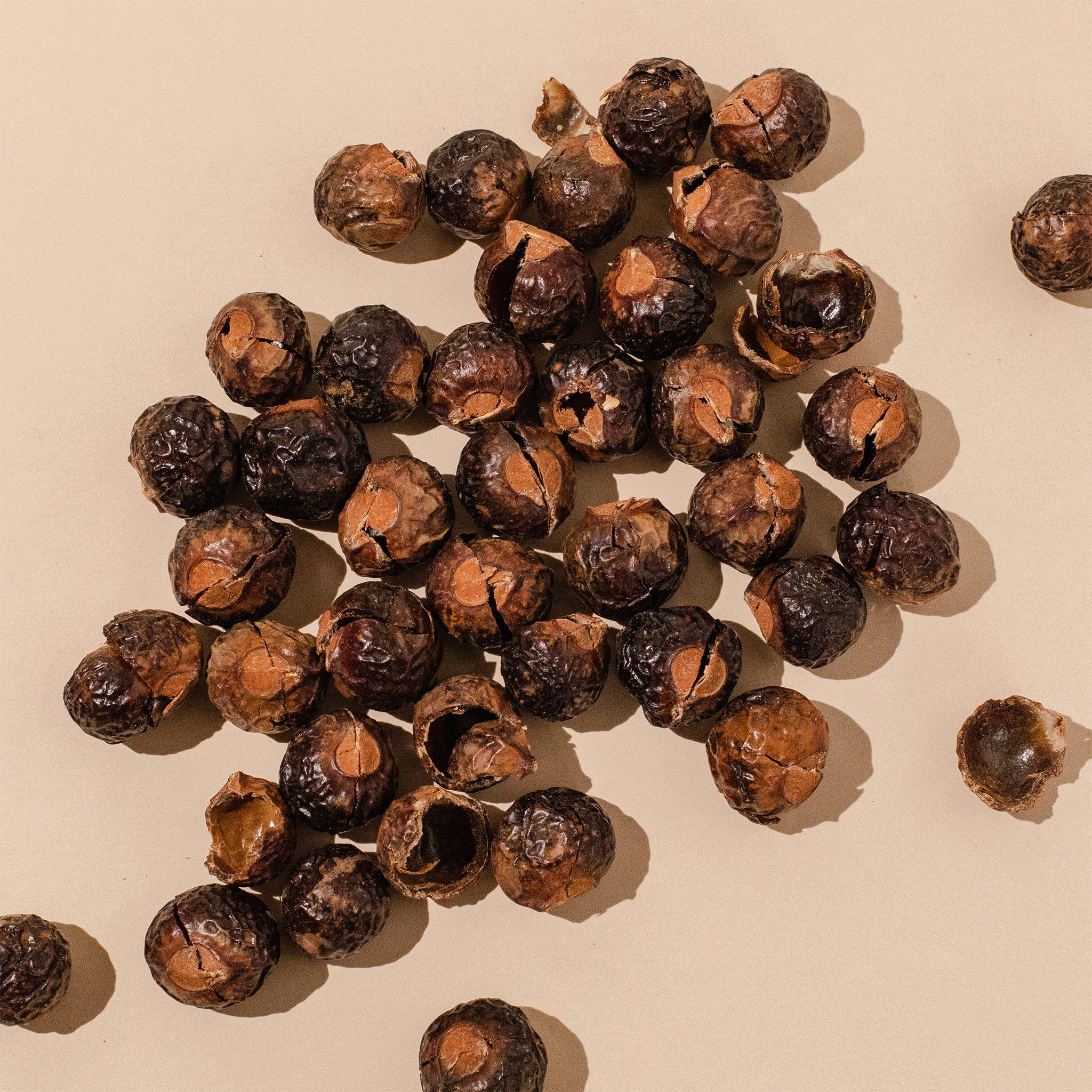 image of soap nuts, what we use to naturally lather our shampoo without sulfates.