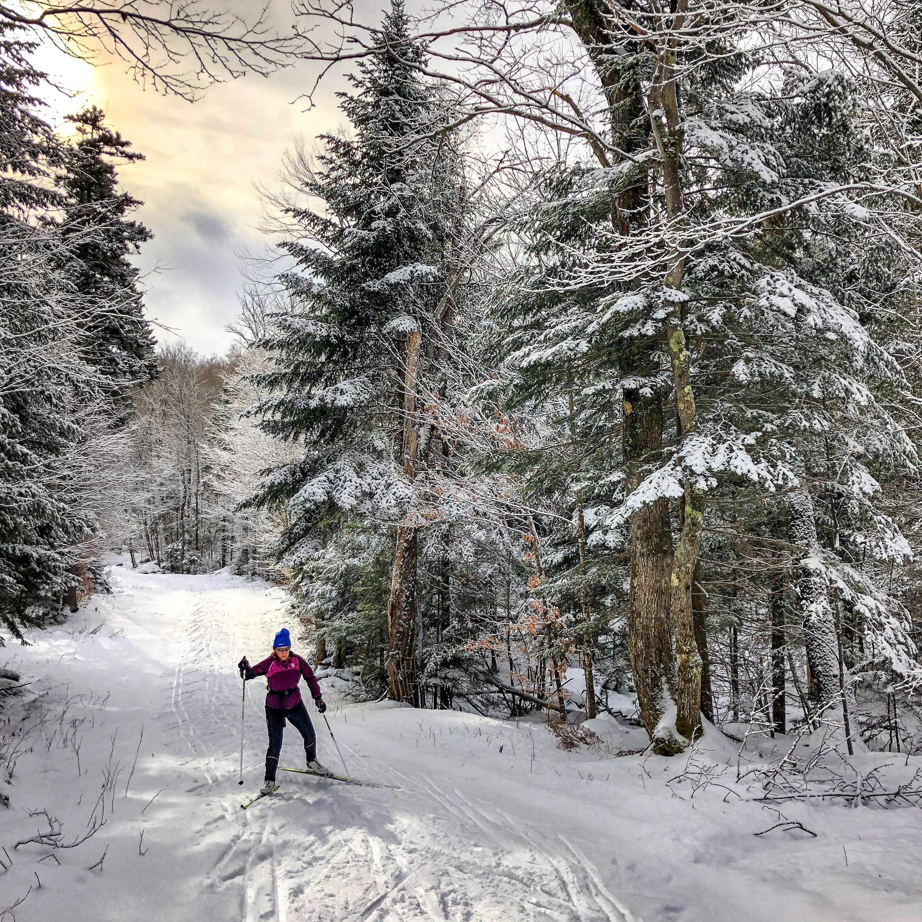 A woman cross country skiing through the trees, she can help soothe her sore muscles with Rocky Mountain Soap's sports therapy in a box.