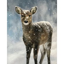 Load image into Gallery viewer, The Yearling Fleece Blankets