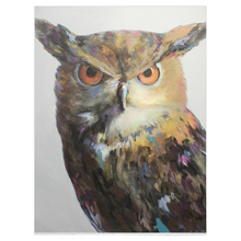Load image into Gallery viewer, Aria The Owl Fleece Blankets