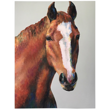 Load image into Gallery viewer, Roger The Horse Fleece Blankets