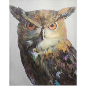 Aria The Owl Fleece Blankets
