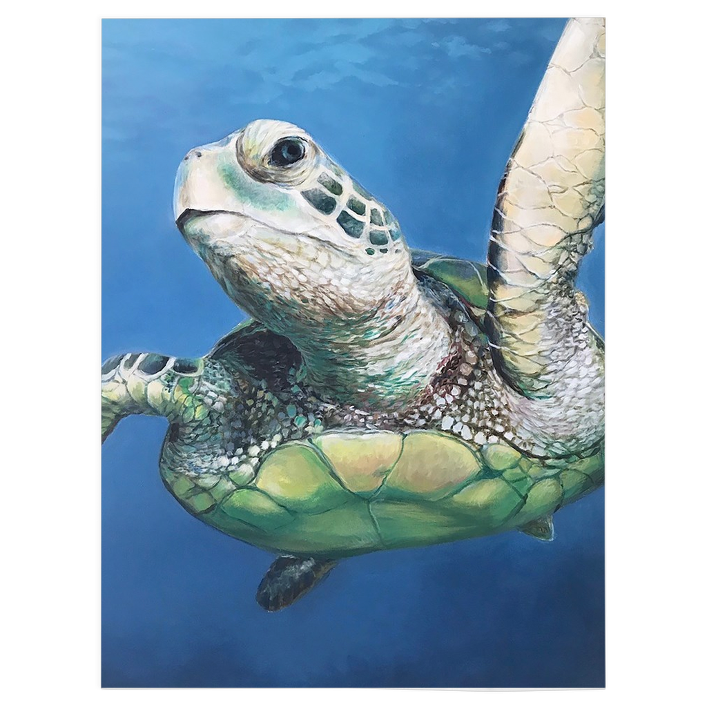 Sheldon The Sea Turtle Fleece Blankets