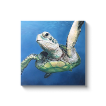 Load image into Gallery viewer, Sheldon the Sea Turtle Canvas Wraps