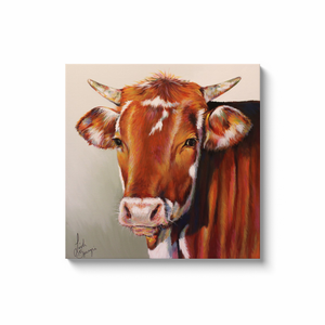 Foster the Cow Canvas Wraps