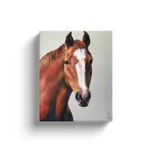 Load image into Gallery viewer, Roger Portrait Canvas Wraps