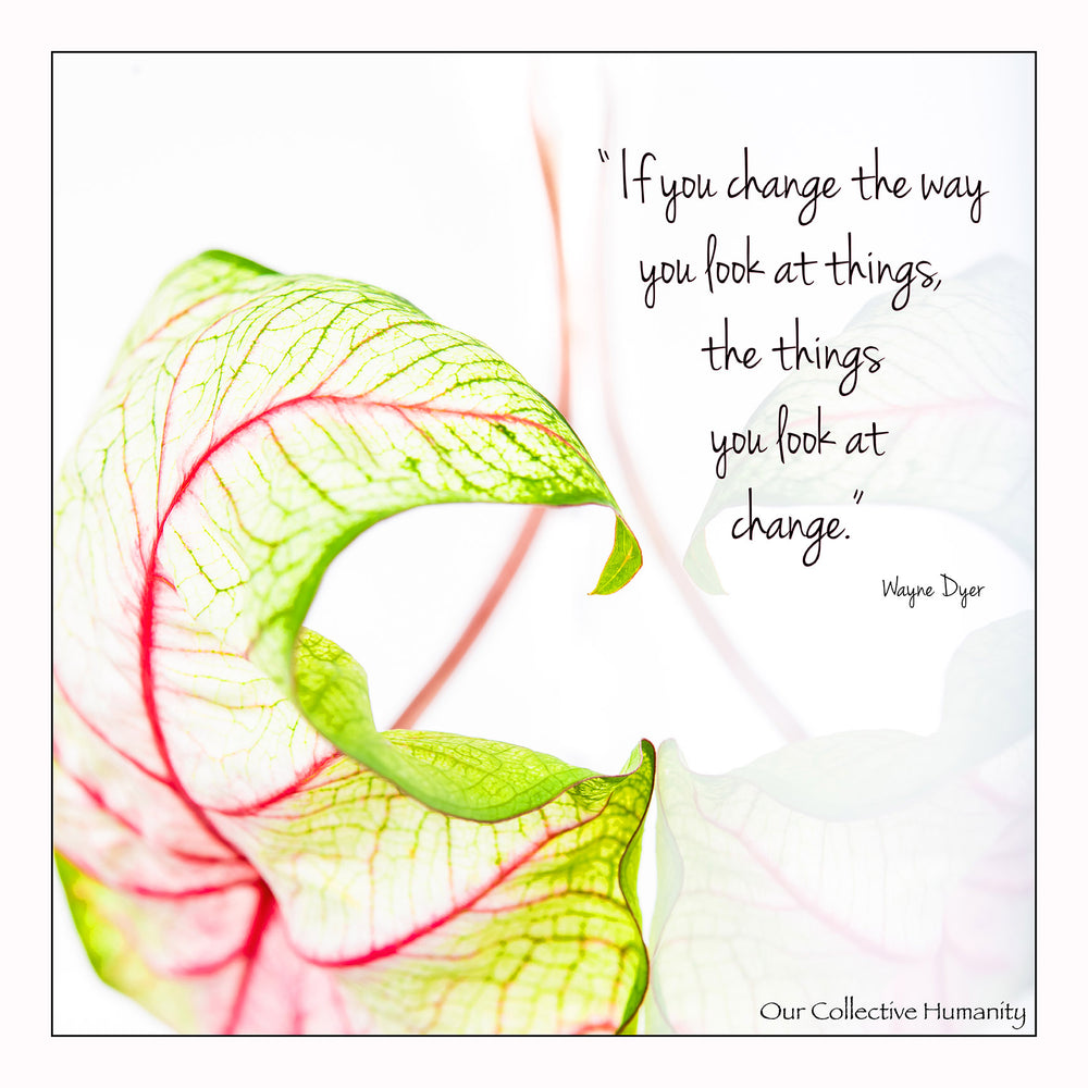 Change The Way You Look At Things And Things