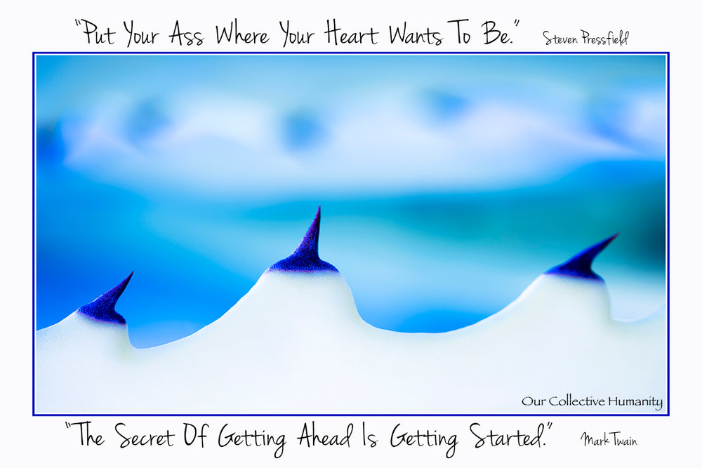 Put Your Ass Where Your Heart Wants To Be - Steven Pressfield