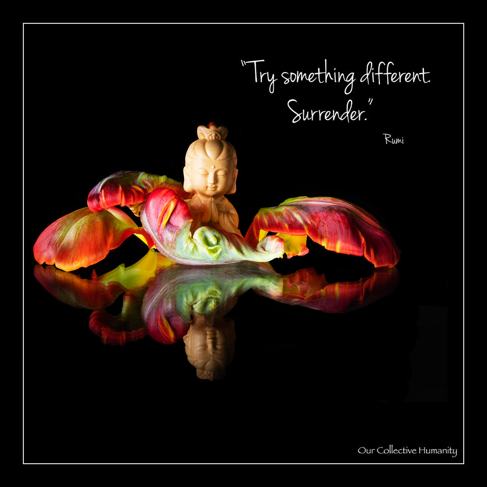 Try Something Different. Surrender.