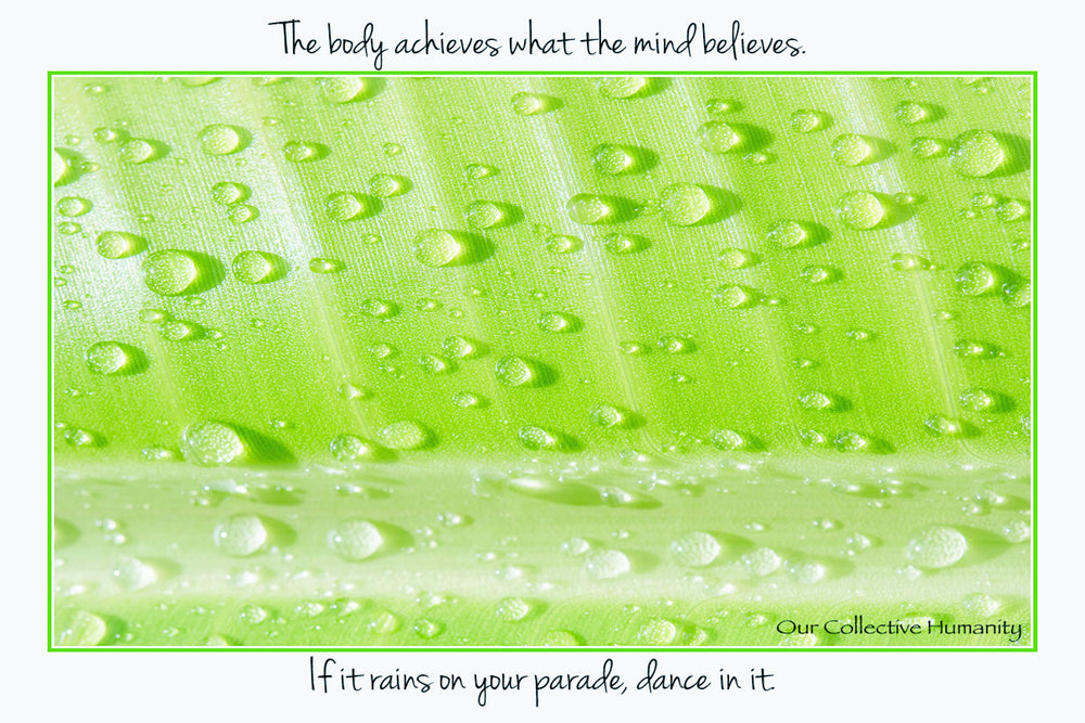 The Body Achieves What The Mind Believes - Dance In The Rain Parade