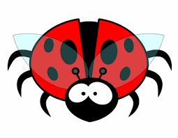 Bugs & Creepy Crawlies Learning Pack - Ages 4-7 - KS1