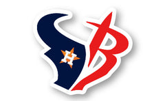 Houston Sport Teams Decal