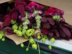 Seasonal Hand Tied Posy