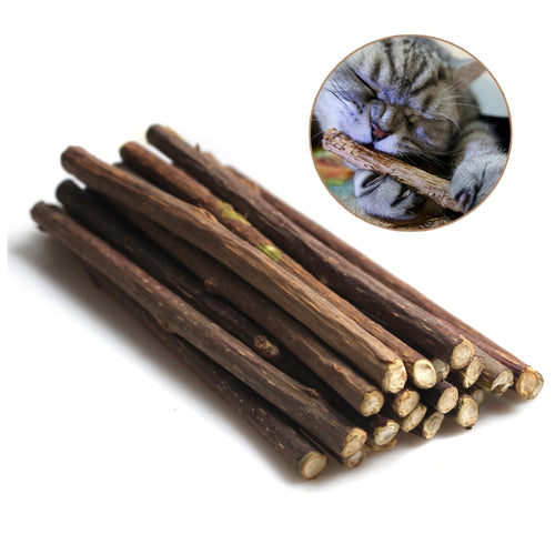 15&20pcs Natural Catnip Pet Cat Molar Toothpaste Stick Matatabi Actinidia Fruit Silvervine Cat Snacks Sticks Pet Cleaning Teeth