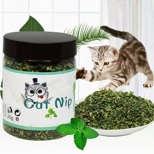 Organic 100% Natural Premium Catnip Cattle Grass 10g/20g/30g Menthol Flavor Funny Cat Toys Pet Healthy Safe Edible Treating
