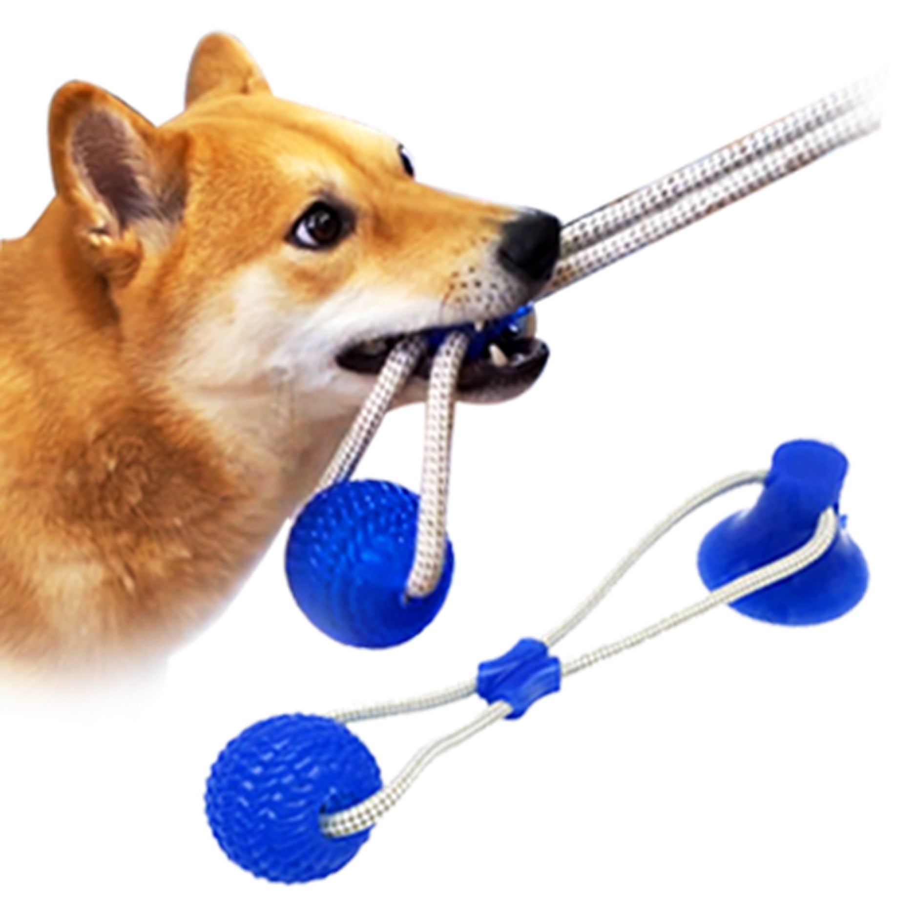 Just Stick It Dog Toy