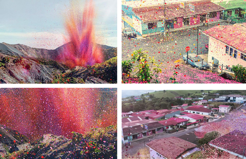 Just In Case You Were Wondering This Is What It Looks Like When Blast 8 Million Flower Petals And Leaves Across The Landscape Costa Rica