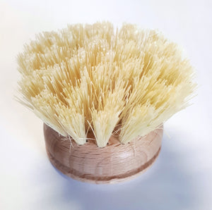 Replacement Head for Wooden Dish Brush