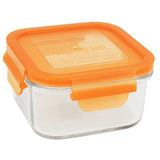 Wean Green Lunch Cubes (Single) Carrot