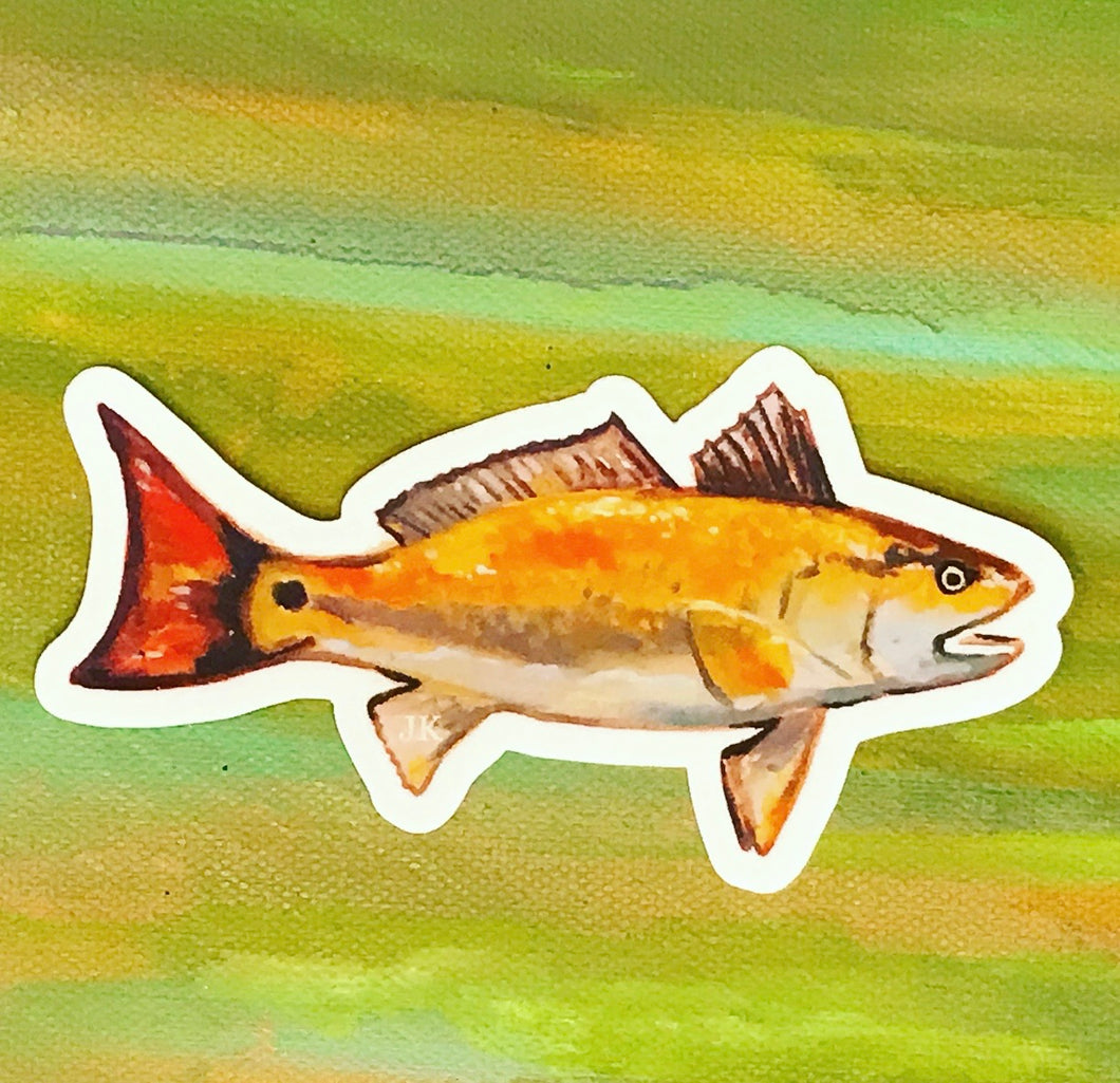 Red Drum sticker