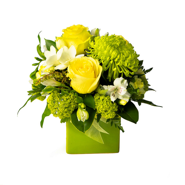 Lime Zest Arrangement from Mayflower Studio Florist in Marlborough, NZ
