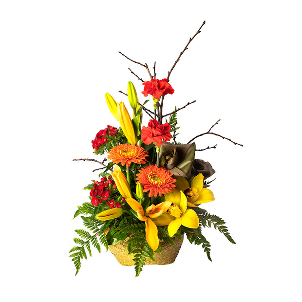 Bright Kete from Mayflower Studio Florist in Marlborough, NZ