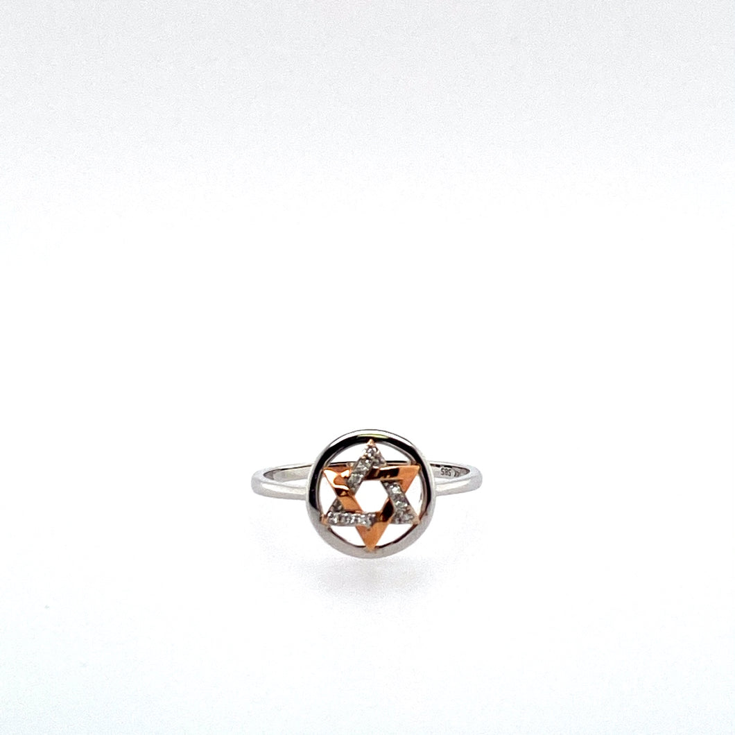 This Dainty 14 Karat White Gold Ring Features a White Gold and Rose Gold Star of David set into the Center. Diamonds are set into the White Gold Section of the Star of David. Total Diamond Weight .06 Carat