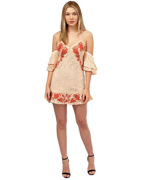 Pink Lace Embroidered Mini Dress