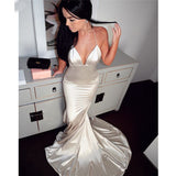 Sexy Spaghetti Straps Long Mermaid V Neck Prom Dress, Evening Dress A71
