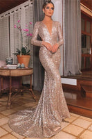 Sexy Silver Backless Lone-Sleeves V-Neck Sequins Mermaid Evening Dresses P01133