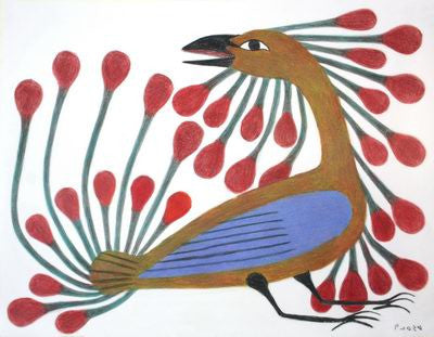18. Bird With Red Plumage