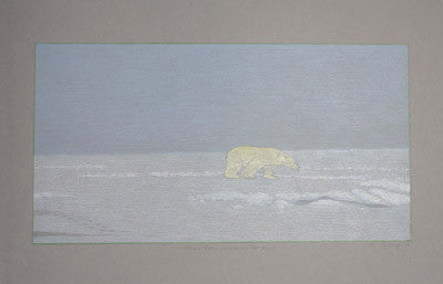 2. Polar Bear Searching For Food