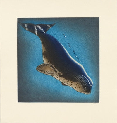 Arqavitturq (Diving Whale)