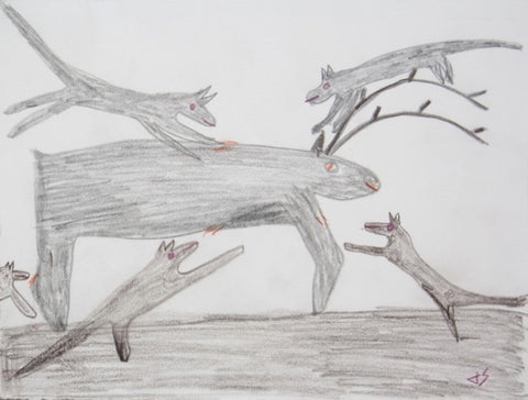Dogs Attack Caribou